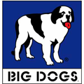 Big Dogs Outlet